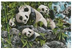 12 Pandas - Cross Stitch Chart