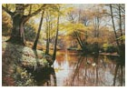 A River Landscape in Springtime - Cross Stitch Chart