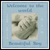 Baby Boy Hand Sampler - Cross Stitch Chart