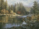 Campers Haven - Cross Stitch Chart