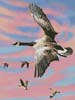 Canadian Geese at Sunset - Cross Stitch Chart