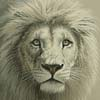 Ghost of the Timbavati (Crop) - Cross Stitch Chart