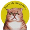 Happy Face - Cross Stitch Chart