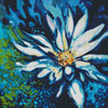 Lotus - Cross Stitch Chart
