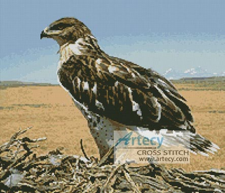Hawk - Cross Stitch Chart