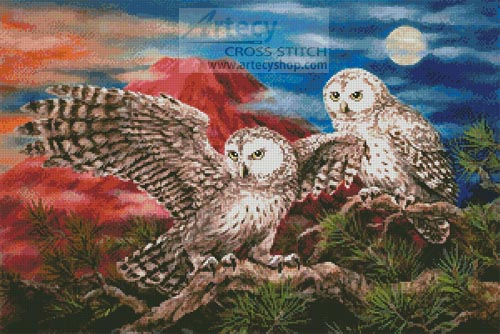 Pair of Owls - Cross Stitch Chart