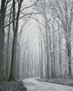 Mini Black and White Road through Trees - Cross Stitch Chart