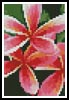 Pink Frangipani Card - Cross Stitch Chart
