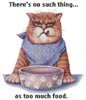 Too Much Food - Cross Stitch Chart